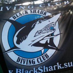 дайвинг клуб черная акула